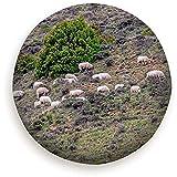 WCHAO Schafe fressen Gras Hochgebirge Tiere Wildlife Landwirtschaft Natur Reserverad Reifendecke Universal