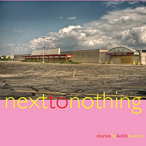 Next to Nothing: Stories audiobook cover art