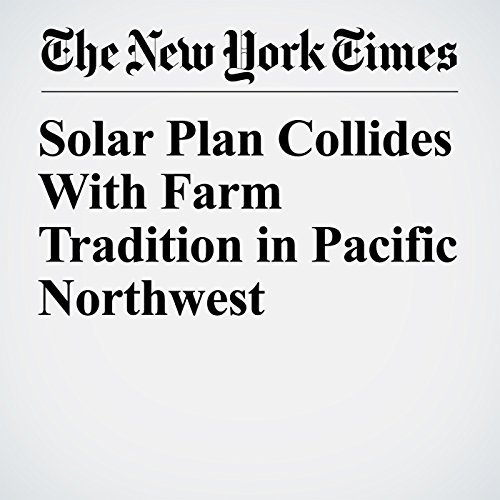 Solar Plan Collides With Farm Tradition in Pacific Northwest copertina