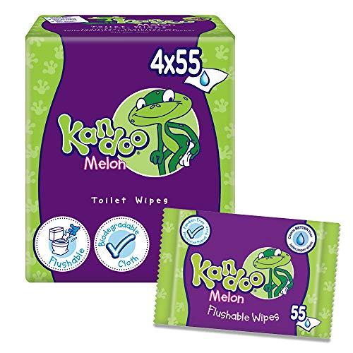 KANDOO 4 Pack de 55 Lingettes Melon Nouvelle Formule