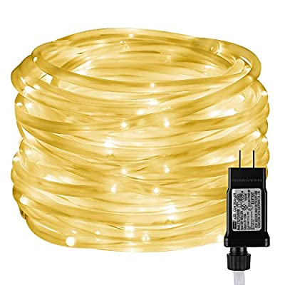 LE LED Rope Light with Timer, Low Voltage, 8 Modes, Waterproof, 33ft 100 LED, Indoor Outdoor Plug in Light Rope and String for Deck, Patio, Bedroom, Boat, Landscape Lighting and More