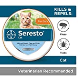 Seresto flea and tick collar provides 8 months of continuous flea and tick prevention for cats The Seresto cat collar works through contact, so fleas and ticks don't have to bite your cat to die This 8 month cat flea and tick treatment is convenient,...