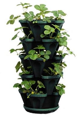 Mr. Stacky 1305-HG 5-Tier Stackable Strawberry, Herb, Flower, Vegetable Planter - Vertical Gardening Indoor/Outdoor Stacking Garden Pots