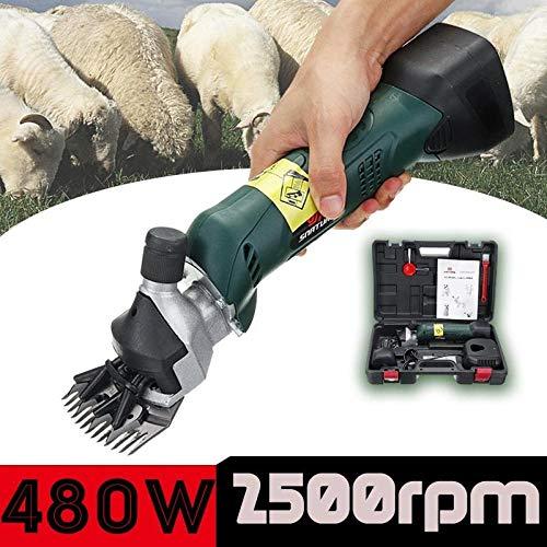 GHJGFGH 480 W Wiederaufladbare Elektrische Schafe Scheren Zubehör Clipper Schafe Ziegen Alpaka Scheren Wolle Scheren Groomer Rasierer Mit Box,220V EU