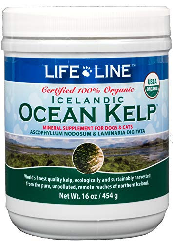 Life Line Pet Nutrition Organic Ocean Kelp Supplement for Skin & Coat, Digestion in Dogs & Cats,16oz, 20101