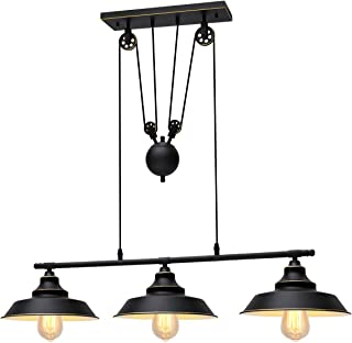 Best pulley ceiling light Reviews