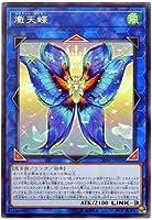 遊戯王/第10期/10弾/CHIM-JP050 熾天蝶 R