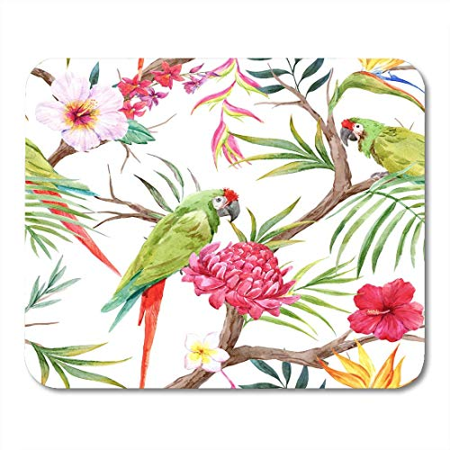 AOHOT Musmattor vattenfärg tropiska trädmönster växter blommor av hibiskus blommande ingefära strelitzia och orkidé Protea musmatta mattor 24 cm x 20 cm för bärbara datorer, stationära datorer kontorsmaterial