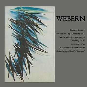 Webern