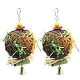 COLIBROX 2 Pack Bird Chewing Toys Foraging Shredder Toy Parrot Cage Shredder Toy Foraging Hanging Toy for Cockatiel Conure African Grey Amazon