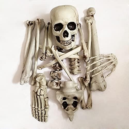 TYFYBH Halloween Nuevo 骷髅 Simulación de Esqueleto Simulación Humana Cuerpo Humano Set de Hueso dispersado Barra de Hueso Ghost House Soly Decorative Props (Size : A)