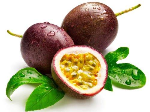 10 graines 10 + graines fruit de la passion (Passiflora edulis) violet grenadille comestible Tropic I74