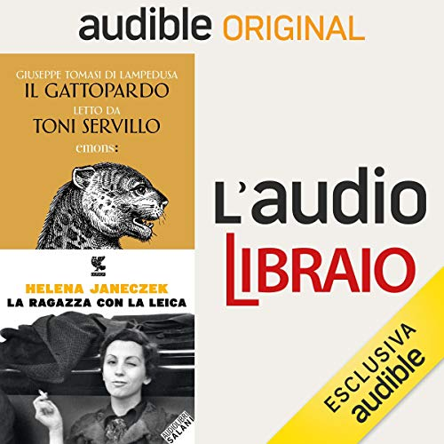 Il principe e la ragazza audiobook cover art