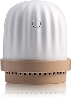 Cool Mist Humidifier for Bedroom, Portable Mini USB Ultrasonic Nano Spray Cactus Aromatherapy Diffuser with Night Light,Pi...