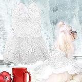 Animale Domestico Cane Abito da Sposa Abiti Sera per Feste Vestiti Eleganti Merletto Principessa Gonna Cucciolo di Pezza Abbigliamento(S-Bianco)