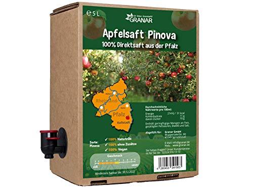 5 Liter-Box Apfel Direktsaft Pinova aus der Pfalz, 100 % Apfelsaft, vegan und ohne Zusätze - 5-Liter Box