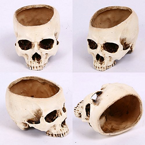 Gothic Skull Ornament Skull Plant Pot Skull Planter Container Head Skull Flowerpot Halloween Skull Figurine Decoration Props Realistic Dead Skull Head Bones Haunted House Bar Decor Desktop Ornaments