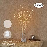 Hairui Lighted Artificial Twig Birch Tree Branch with Fairy Lights 32IN 100 LED Battery Operated Lighted White Willow Branch for Christmas Easter Wedding Spring Decoration (Vase Excluded)