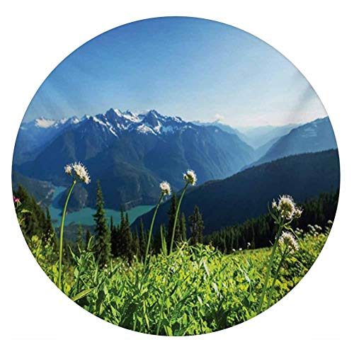 LCGGDB Nature 3D Vinyl Stained Glass Film,Diablo Lake Washington Mountains Dandelions Thistle Flowers Wilderness Image Window Sticker Decal for Office Meeting Room Home,Round 18'x18',Green Sky Blue