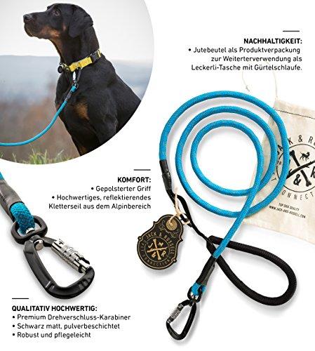 Jack & Russell Premium Hundeleine Kosmo aus Profi-Kletterseil und Premium Drehverschluss-Karabiner - Soft-Grip Handschlaufe (Blau/Reflektierend)