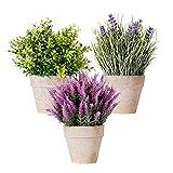 Mini Plantas de Hojas de Dinero Artificiales en Macetas Juego de 3 Brotes de Cedro de Lavanda Vegetación en Maceta Flor Falsa Plástico Verde Pequeña Planta de Interior Decoración del Hogar