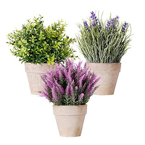 Pflanze Künstliche, Kunstliche Pflanzen Mini Kunstpflanzen Gefälschte Künstliche wie Echt Lavendel Blumen Pflanze 3 Stück Kleine mit Topf für Balkon Bonsais Büro Badezimmer Zuhause Deko