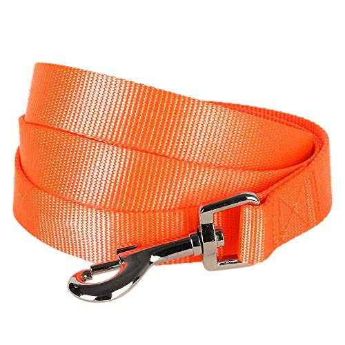 Blueberry Pet Essentials 19 Colors Durable Classic Dog Leash 5 ft x 3/8', Florence Orange, X-Small, Basic Nylon Leashes for Puppies