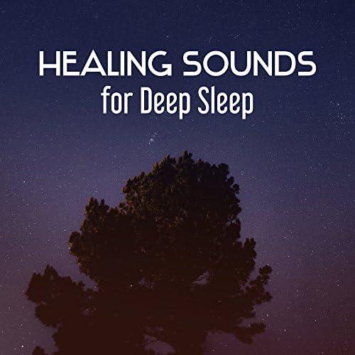 Deep Sleep Hypnosis Masters