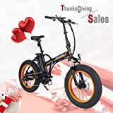 Onway Fat Electric Bike Ebike 20 Inch 350w 36v Electric Folding Bicycle with Detachable Lithium Battery for Adults