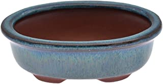 lychee Chinese Bonsai Pot Oval Glazed Flower Pot Planter Home Garden Decor