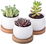 3 Piece Mini White Ceramic Pots