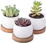 StarPack Premium 3 Piece Mini White Ceramic Succulent Planter Pot Set...