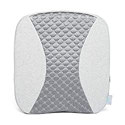 which is the best brookstone lumbar support in the world