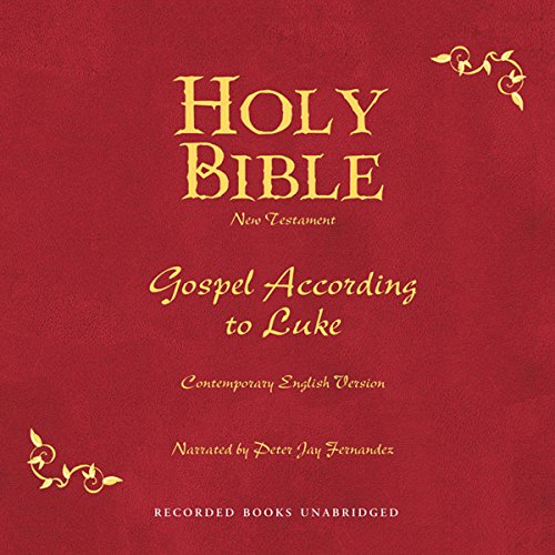 Holy Bible, Volume 24 audiobook cover art
