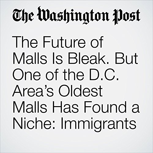 The Future of Malls Is Bleak. But One of the D.C. Area's Oldest Malls Has Found a Niche: Immigrants cover art