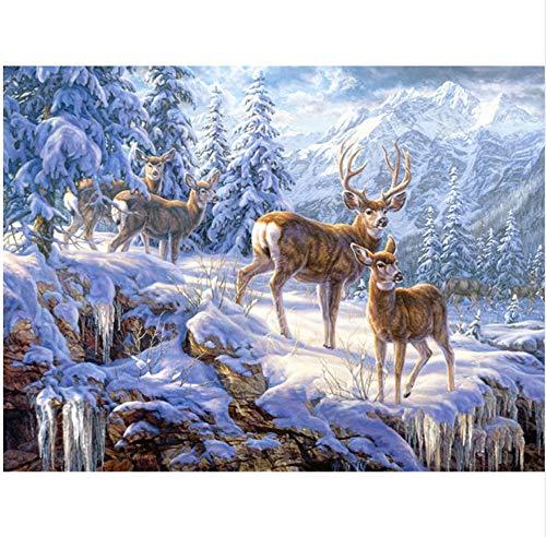 Diamante 5D Pintura Bricolaje Bricolaje Mauka Copo de nieve