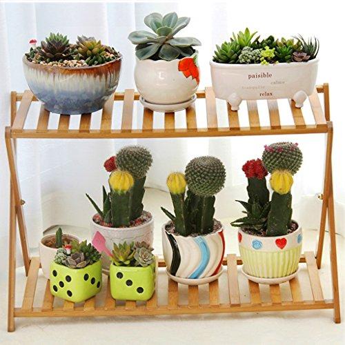 T4U Paysage de campagne style grand espace succulente Cactus plante Pots De Fleurs Planteur