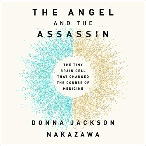 The Angel and the Assassin audiobook cover art