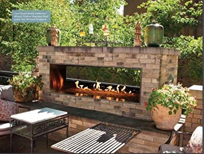"""Empire Comfort Systems Carol Rose Outdoor SS See-Through 48"""" Linear Fireplace - LP"""