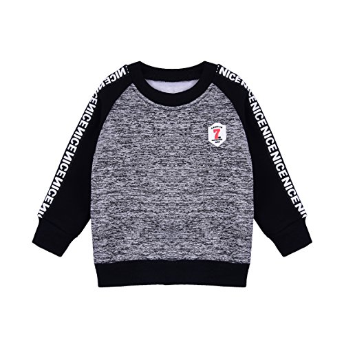 little dragon pig Toddler Baby Boy Sweatshirt 12-18Months Kids Long Sleeve Tee Fall Winter Clothes (Size18M, Grey)