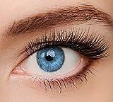 ELFENWALD farbige Kontaktlinsen, INTENSE BLAU/AZUR, natürlicher Look, maximaler Tragekomfort, ohne Stärke, 1 Paar weiche Farblinsen, inkl. Behälter und Anleitung 3 - Monatslinsen -