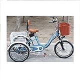 Triciclo eléctrico Bicicleta Bicicleta asistida de 3 Ruedas Scooter pequeño y Viejo batería de Litio de 20 Pulgadas para Enviar a los Padres después de la Canasta de Ejercicio, Compra 48V12