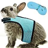 Correa Arnés de Conejo Ajustable Arnés Suave de Conejos Arnés de Conejito de Malla Chaleco de Hámster con Correa Elástica para Animales Pequeños Gatos Caminar al Aire Libre (M, Azul Claro)