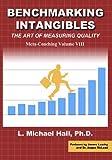 Benchmarking Intangibles (Meta-Coaching Book 7) (English Edition)