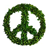 PINE AND PAINT LLC Preserved Boxwood Wreath Peace Sign 16 Inches