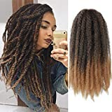GX Beauty 4 Packs Marley Hair Afro Kinky Curly Crochet Hair 18 Inch Long Marley Twist Braiding Hair Ombre Kanekalon...