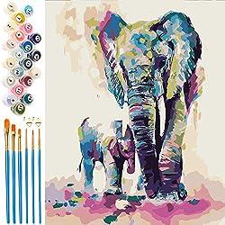 EXTSUD Malen nach Zahlen, Paint by Numbers DIY Handgemalt Ölgemälde Set selber auf Leinwand malen nach Zahlen zur Heimdekoration für Erwachsene, Kinder, Anfänger, Rahmenlos 40 x 50cm