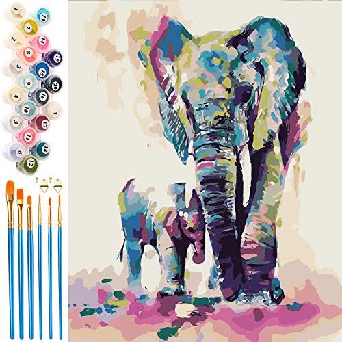 EXTSUD Pintura por Números para Adultos y Niños, Dibujos para Pintar con Números, DIY Pintura al Óleo por Números Decoración del Hogar, Sin Marco, 40 x 50 cm
