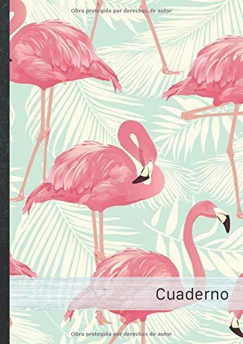 Cuaderno: 120 páginas a cuadros • Bloc de Notas con tapa blanda...