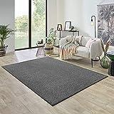 Carpet Studio Ohio Alfombra Salón 160x230cm, Alfombras para Sala, Comedór & Dormitorio, Fácil de Limpiar, Superficie Suave, Pelo Corto - Platino/Gris